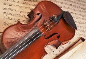 Violine - ab wann bin ich ein Künstler, der sich in der Künstlersozialkasse pflichtversichert?