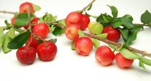Acerola ist eine natürliche Vitaminbombe, keine andere Frucht enthält soviel Vitamin C.