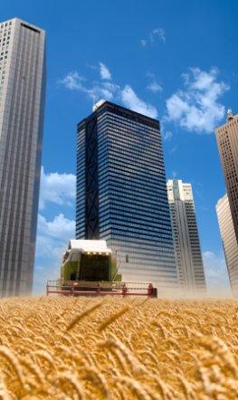 Agrarspekulation - Banken spekulieren an der Börse auf Nahrungsmittel