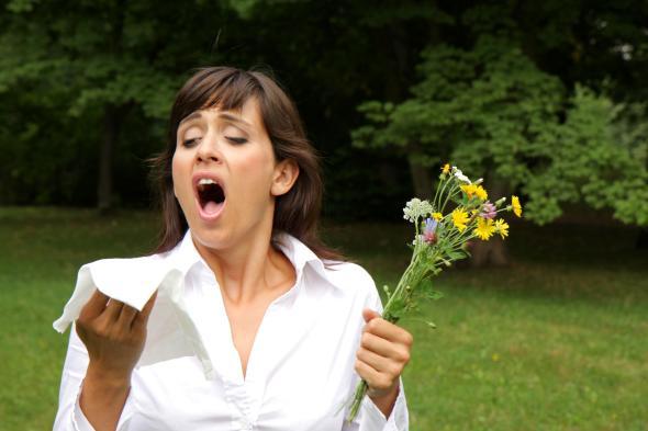Das Allergierisiko steigt in jedem Sommer.