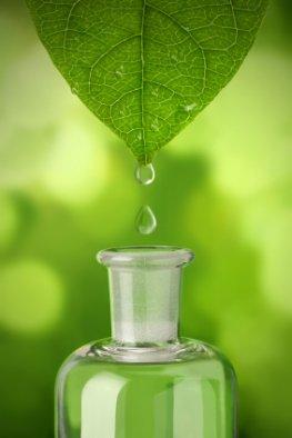 Alternativmedizin - Heilkräuter helfen und heilen schon seit Jahrhunderten