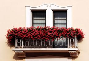 Balkonpflanzen - Pflanzen auf dem Balkon