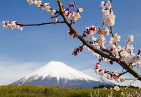 Berg Fujisan Kyoto