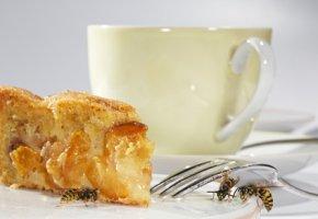 Bienen auf dem Kaffeetisch