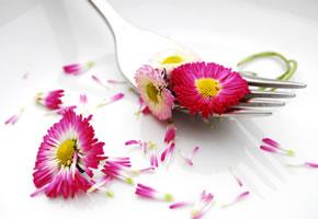 Blüten auf dem Teller