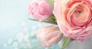 Blumenstrauß mit Rosen und Tulpen.