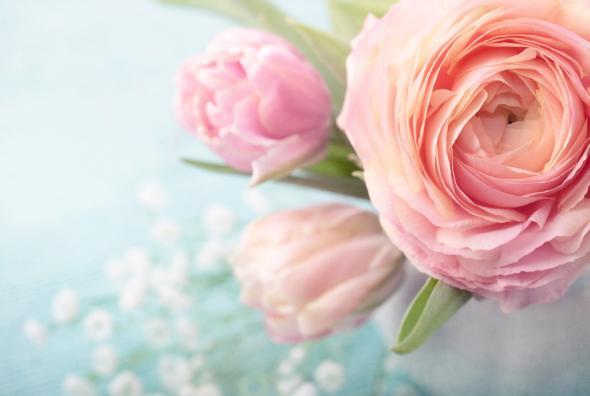 Ein Blumenstrauß mit Rosen und Tulpen.