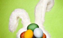 Brauchtum - der Osterhase bringt die Eier an Ostern