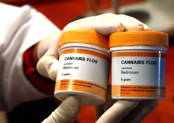 Cannabiskonsum kann das Diabetesrisiko senken, wie eine Studie aus den USA belegt.