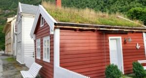 Eine Dachbegrünung bringt viele Vorteile.