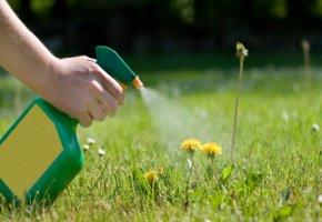 Den Rasen mit Branntweinessig oder Aromaöl einsprühen