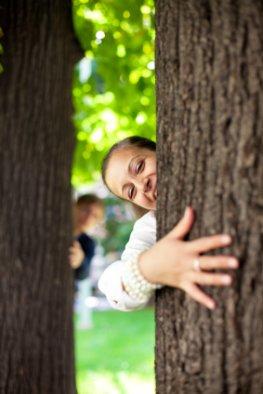 Baumheilkraft - Die Heilkraft der Bäume