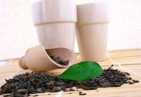 Die Teekampagne: Darjeeling Tee importiert aus Indien
