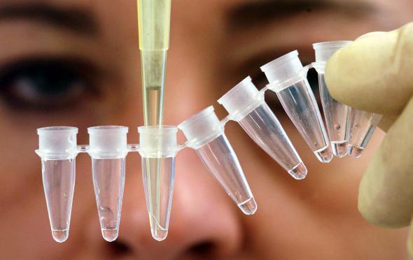 DNA-Analyse: Laborantin befüllt kleine Tuben mit Flüssigkeit.