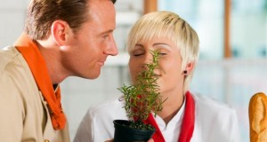 Rosmarin Duft kann das Denkvermögen steigern.
