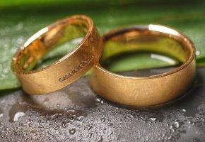 Eheringe - Symbol der Liebe