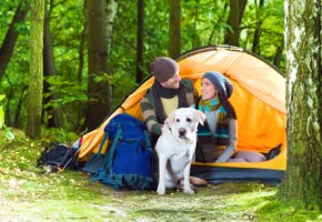 Ein Pärchen macht Camping-Urlaub mit dem Hund
