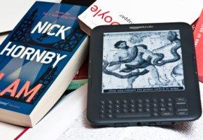 Elektronisches Lesegerät - mit dem E-Reader kann man viele Bücher speichern