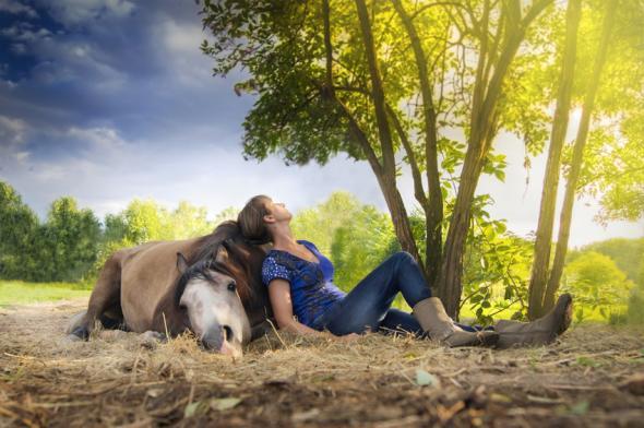 Pferde wirken entspannend auf den Menschen.