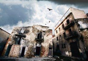 Erdbeben in der Stadt - Tiere verlassen die Stadt instinktiv