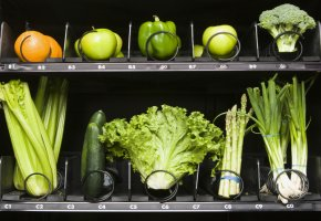 Ernährungswissenschaft - die DGE hat einen neuen Medienshop
