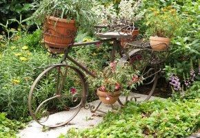 Gartenrad: Fahrrad als Pflanzenständer