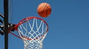 Funsportart: Esel-Basketball - Basketball mit Eseln