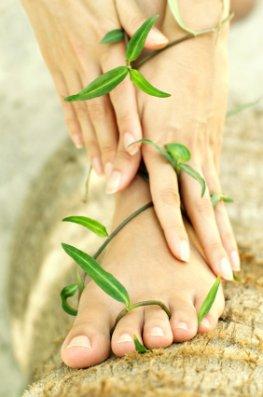 Funktionspflaster - Pads mit Kräuteressenzen werden auf die Fußsohle aufgeklebt.
