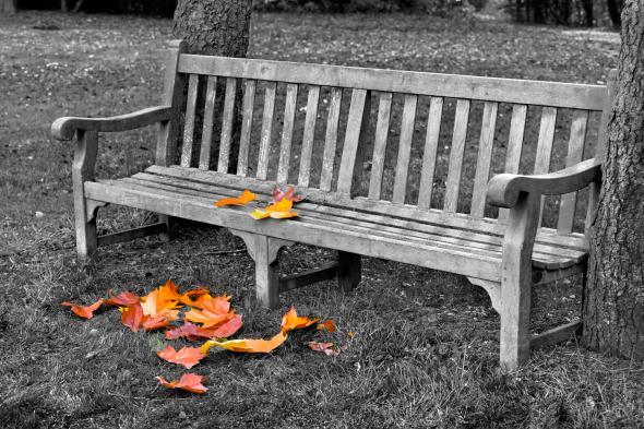 Eine Holz-Gartenbank im Herbst