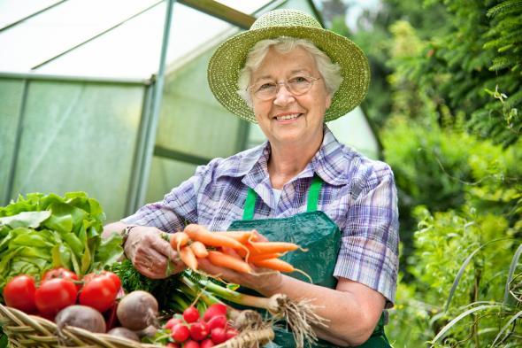 Seniorin steht vor ihrem Gewächshaus mit einem Korb voller Gemüse.