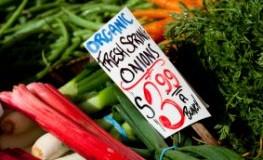 Gemüse - frischer Rhabarber beim Gemüsehändler