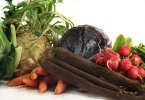 Gemüse im Winter - Wintergemüse z.B. Kohlarten, Wurzelgemüse, Salate und Zwiebelgewächse