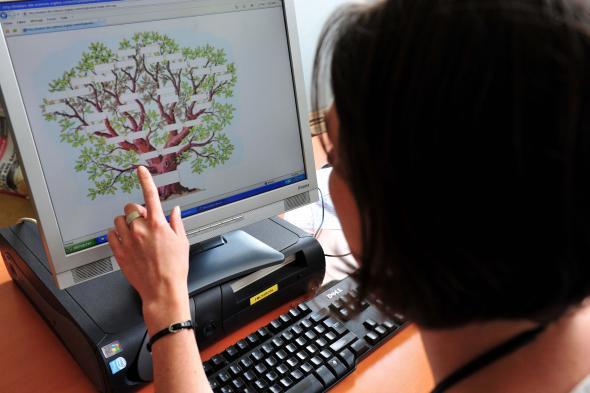 Eine Frau legt einen Stammbaum auf ihrem Computer an.