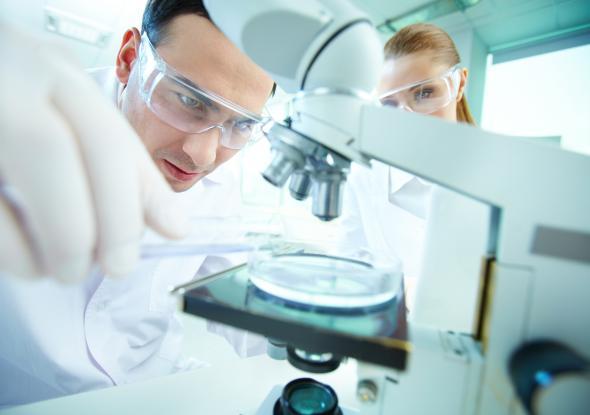 Wissenschaftler arbeiten an einem Mikroskop.