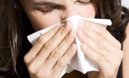 Haustaubmilbenallergie: Die Milben verursachen niesen und tränende Augen