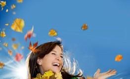 Herbstfarben: Blätter im Herbst