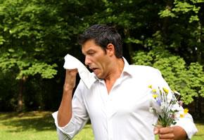 Allergiker haben Heuschnupfen