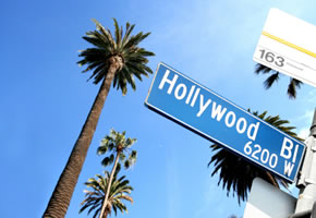 Hollywood - Palmenallee