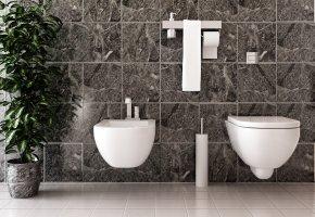 Toilette in Marmor: Hydrokultur ein Badezimmer mit Bidet