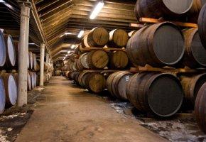 In Holzfässern wird der Whisky über Jahre gelagert
