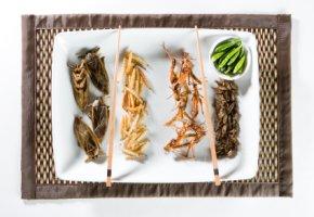 Insekten essen - Fritierte Delikatessen aus Asien