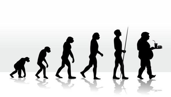Zivilisation: Die Evolution der Menschheit  - von der Intelligenz zur Dummheit.