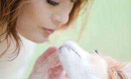 Japanerin mit Hund - Hundebesitzer für eine Stunde