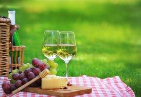 Sommer-Picknick - Käse passt besser zu Weißwein