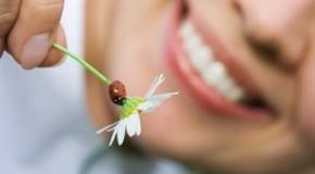 Kamille hilft bei Entzündungen