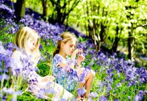Waldkindergärten - Kindererziehung im freien
