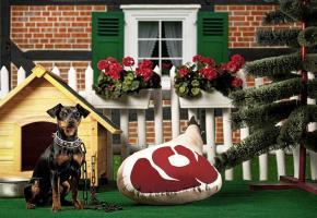 Ein Hund sitzt neben dem Schinken Stoffkissen