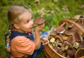 Ein kleines Mädchen mit frischen Pilzen