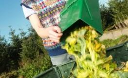 Kompostieren kann für Allergiker ein Problem werden