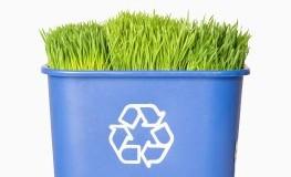Kompostieren und Wiederverwerten